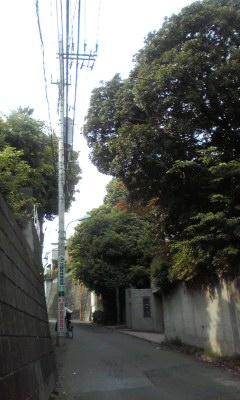 f:id:higasi-kurumeda:20120517153114j:image