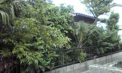 f:id:higasi-kurumeda:20120531153020j:image
