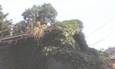 f:id:higasi-kurumeda:20120618074508j:image