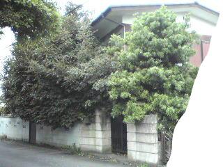 f:id:higasi-kurumeda:20120622092025j:image