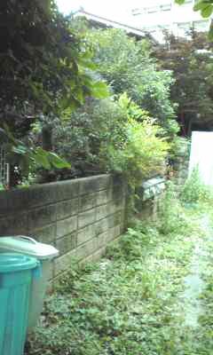 f:id:higasi-kurumeda:20120626101228j:image