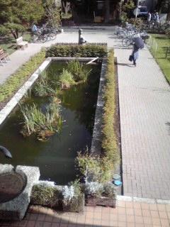 f:id:higasi-kurumeda:20130518153351j:image
