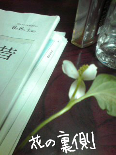 f:id:higasi-kurumeda:20130608081735j:image