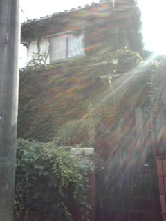 f:id:higasi-kurumeda:20130727155357j:image