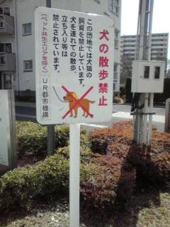 f:id:higasi-kurumeda:20160321120200j:image