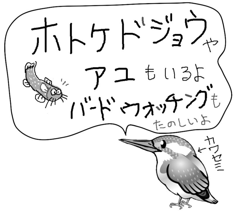 f:id:higasi-kurumeda:20160529222610p:image