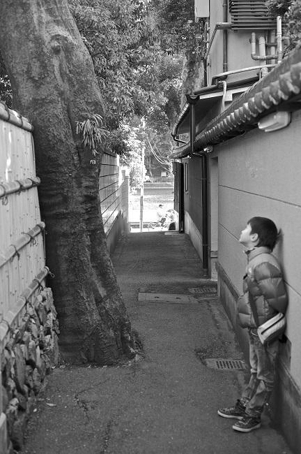 京都新聞写真コンテスト 題名:会話
