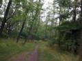[多摩川][河川敷][林][稲城]日曜朝の多摩川散歩 稲城市 6時半にも関わらず野球をやっている人の多