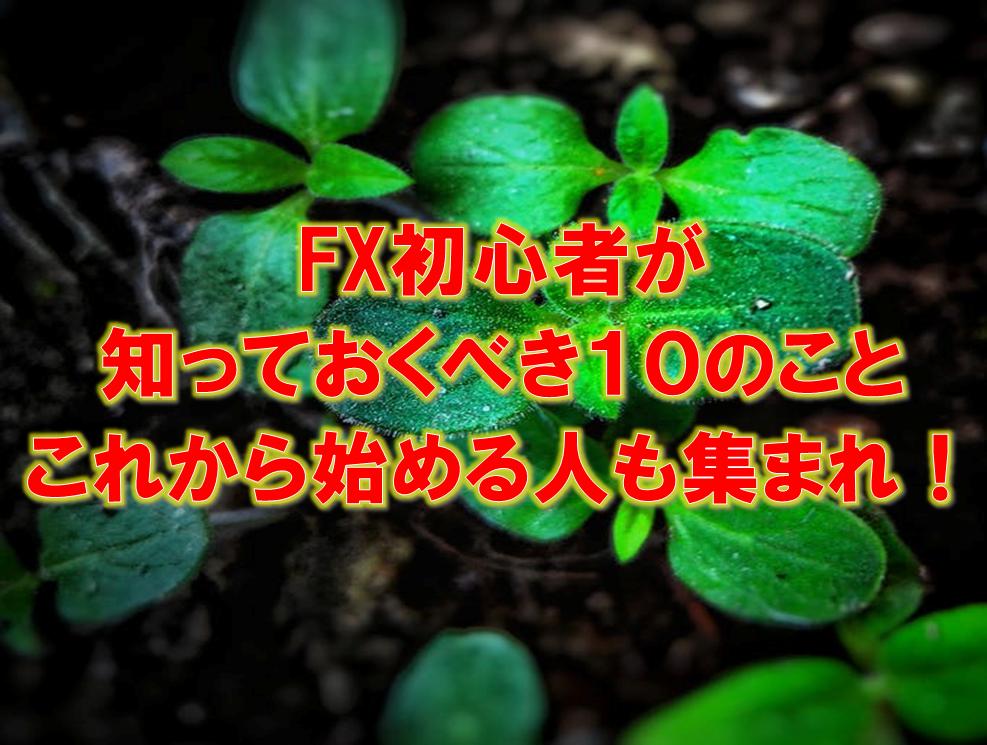 f:id:higedura:20181117214844p:plain