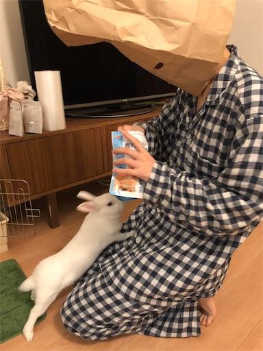 f:id:higekoioyaji:20191102091930j:image