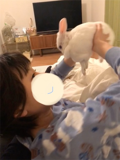 f:id:higekoioyaji:20200108181852j:image