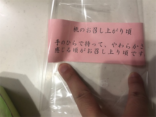 f:id:higekoioyaji:20200625062053j:image