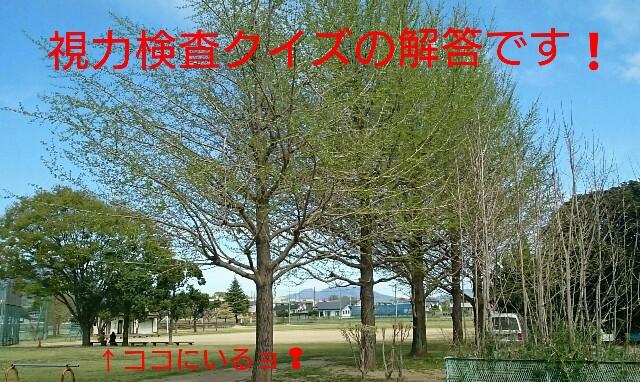 f:id:higeyahman:20180405172809j:image
