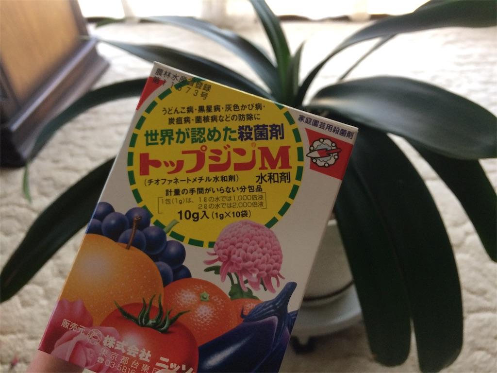 f:id:highball_koyuki:20180511154335j:image
