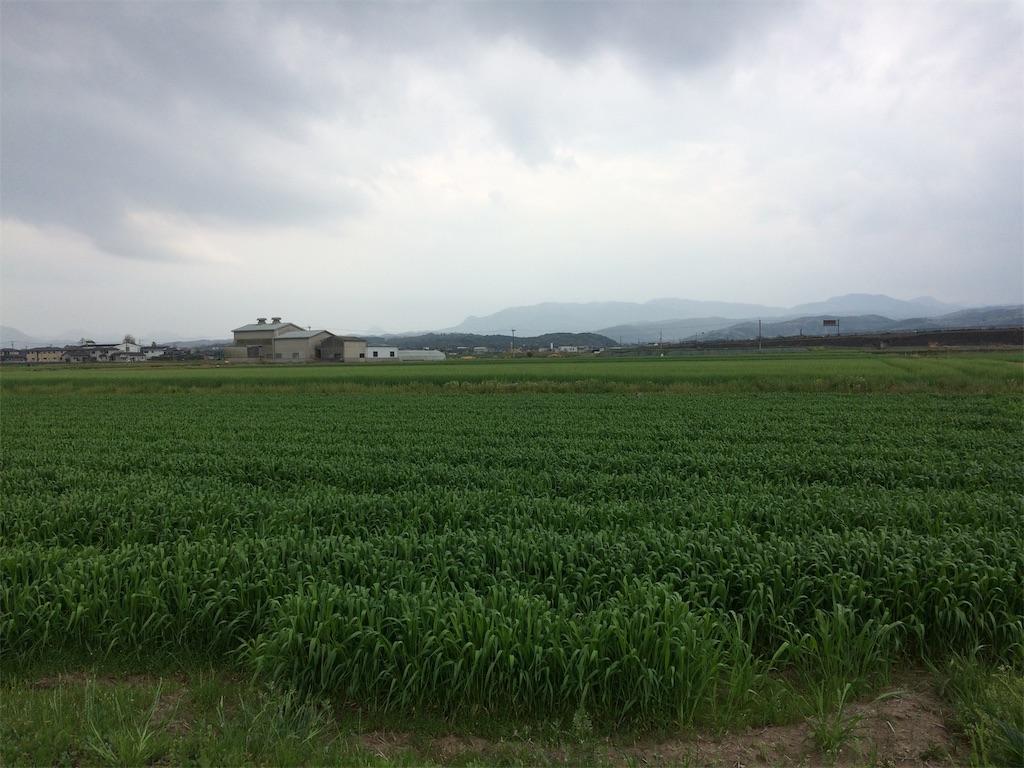 f:id:highball_koyuki:20181202235240j:image