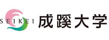 f:id:highishiki:20190606010032p:plain