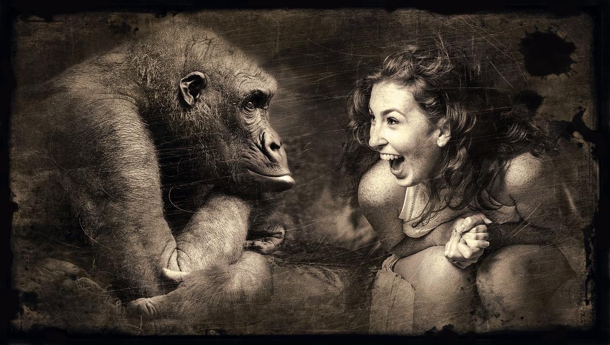 猿も人間も友達の数は150人が限界