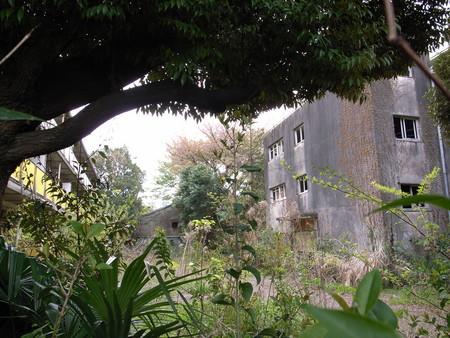 武蔵野廃墟