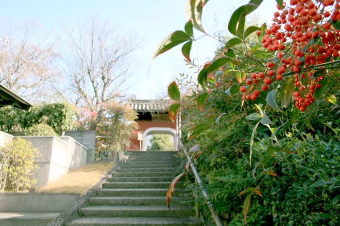 f:id:higuchi1967:20121214120324j:image