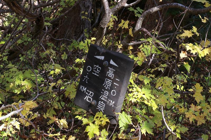 f:id:higuma-center:20190927174703j:plain