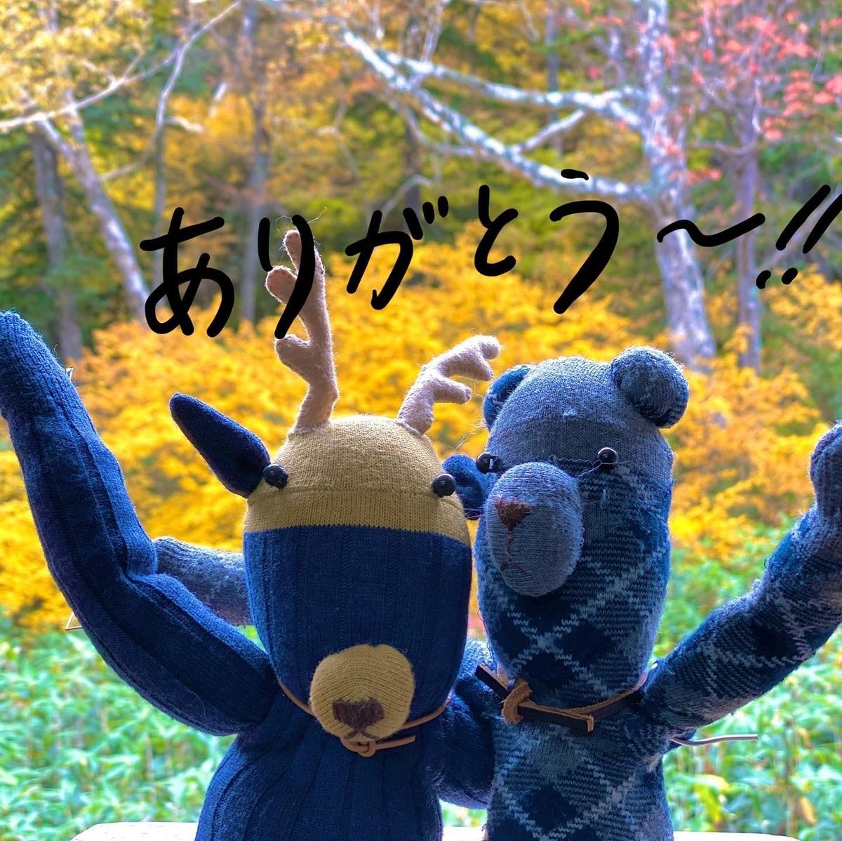 f:id:higuma-center:20201129010402j:plain