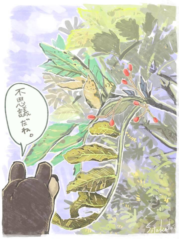 f:id:higuma-center:20201129013931j:plain