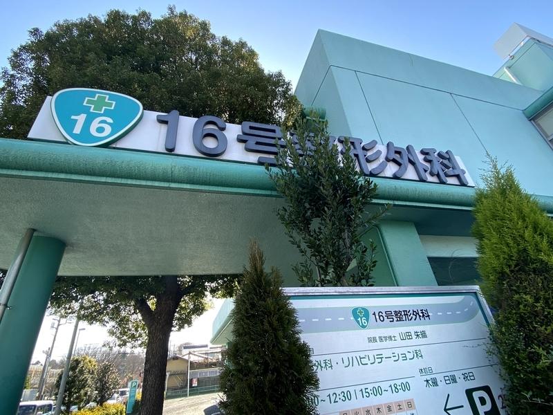 f:id:higurashi-ao:20210312110355j:plain