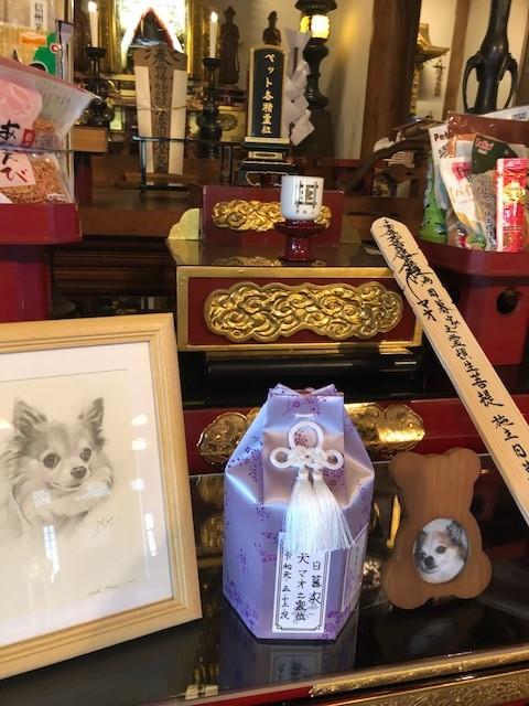 f:id:higurashi-takanori:20191031155823j:plain