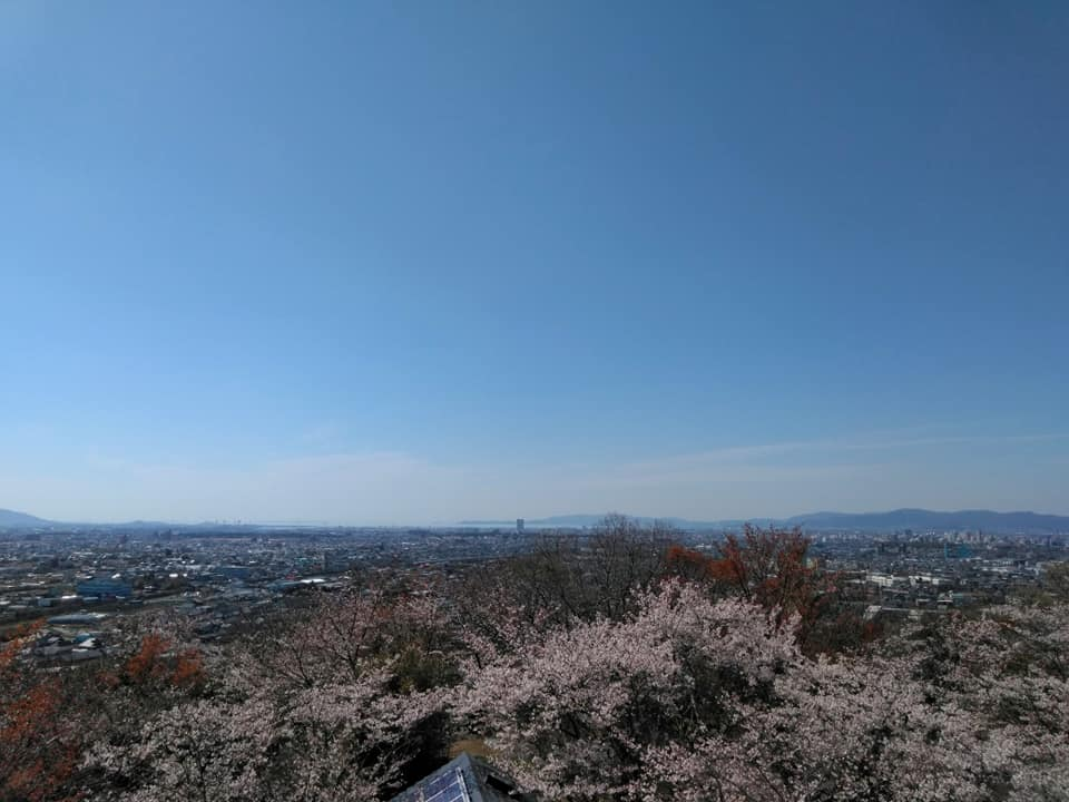 f:id:hihararara:20190405224035j:plain