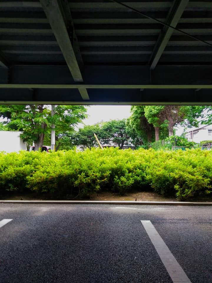 f:id:hihararara:20190603211904j:plain