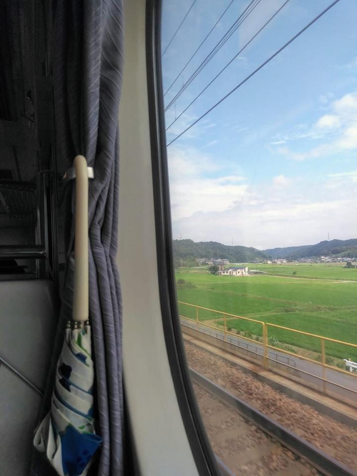 f:id:hihararara:20190711214536j:plain