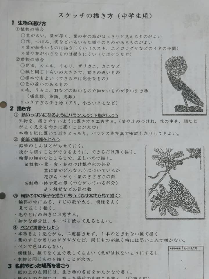 f:id:hihararara:20190827191841j:plain