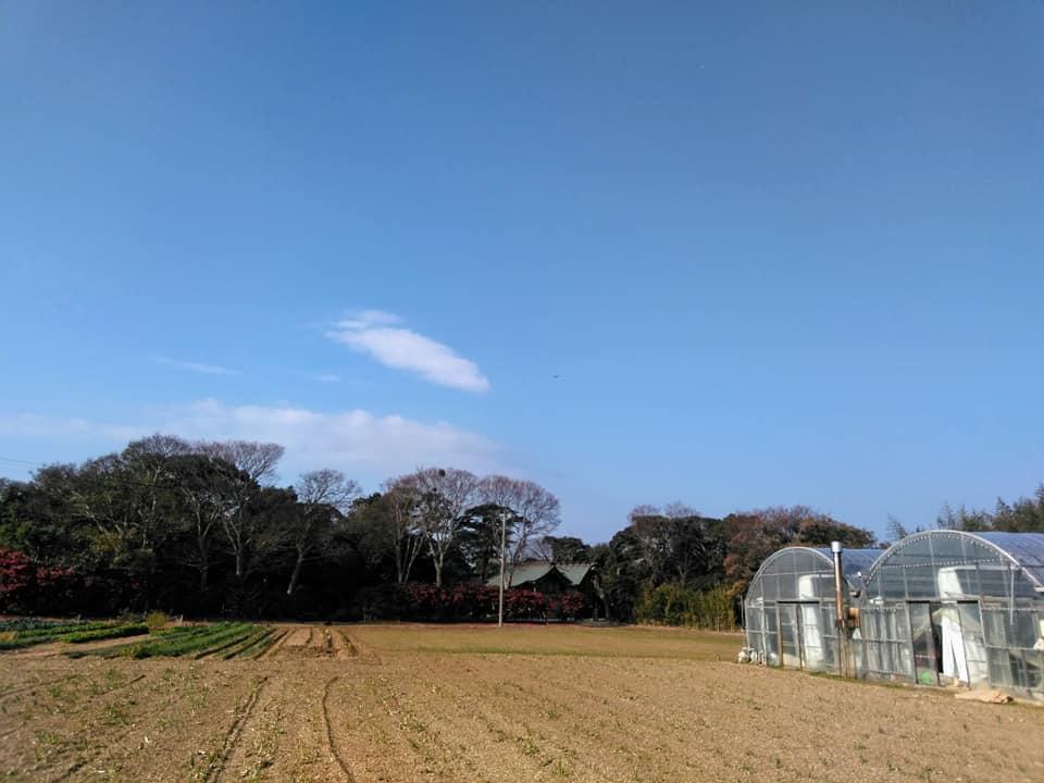 f:id:hihararara:20200104131134j:plain