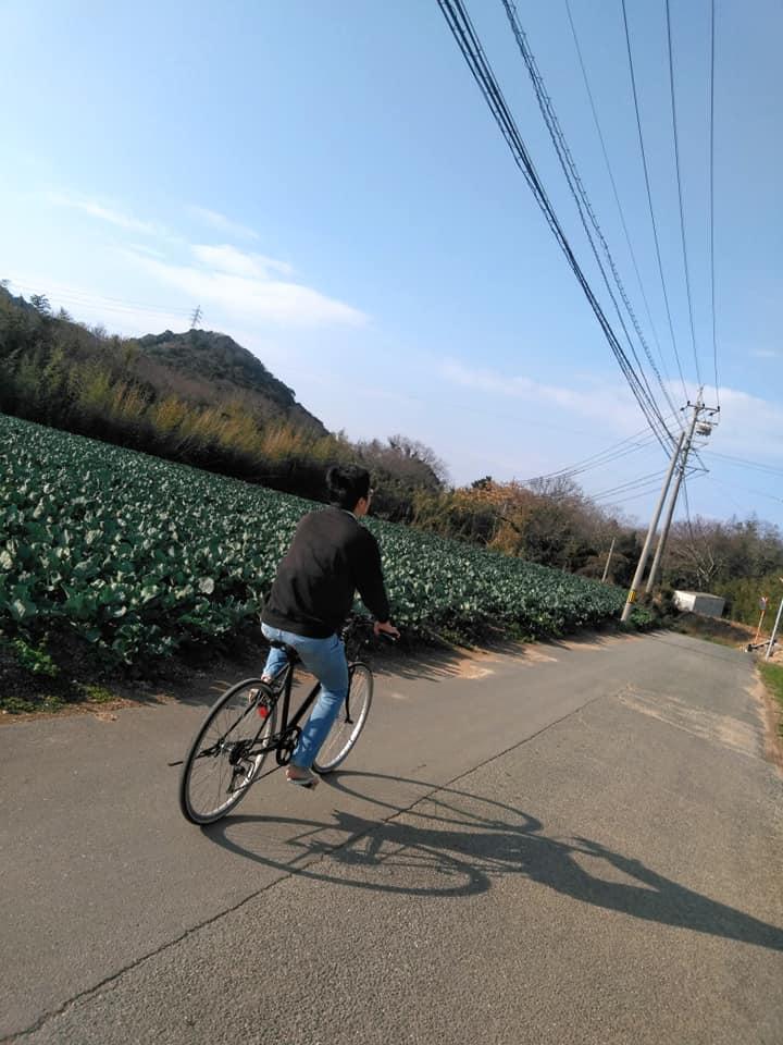 f:id:hihararara:20200104131142j:plain