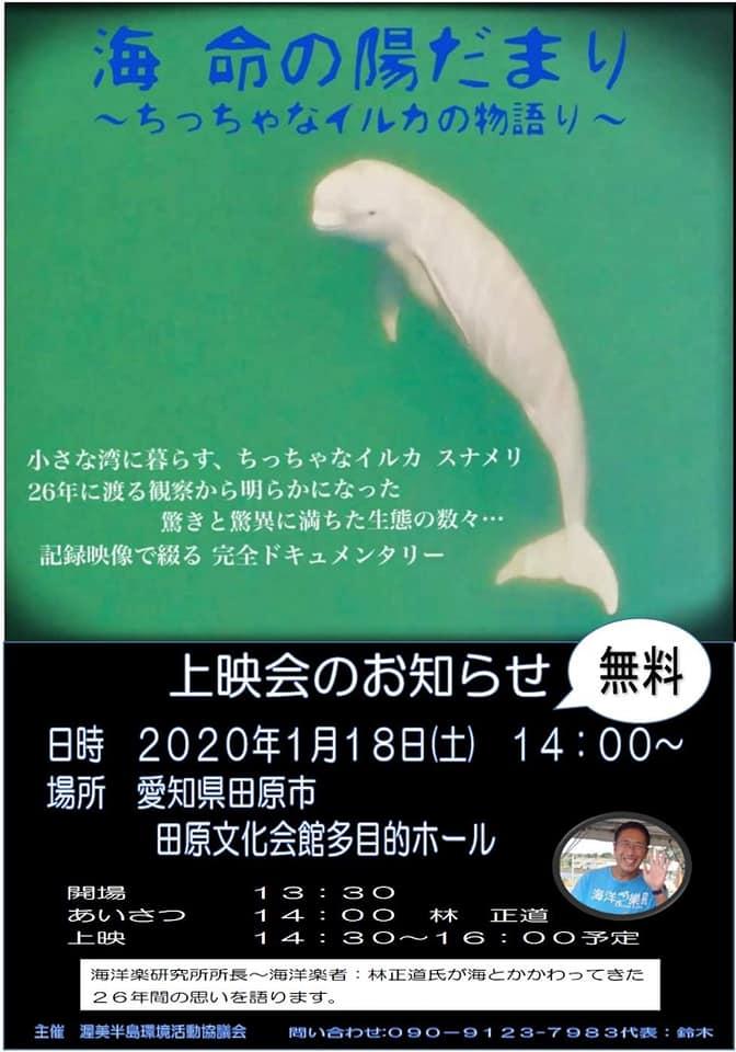 f:id:hihararara:20200118202832j:plain