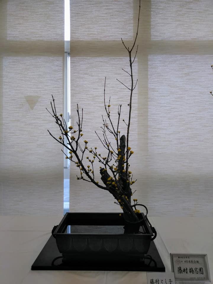 f:id:hihararara:20200219195934j:plain