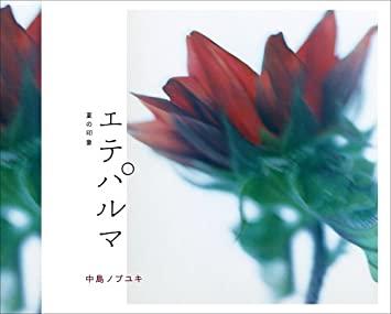 f:id:hihararara:20200404224039j:plain