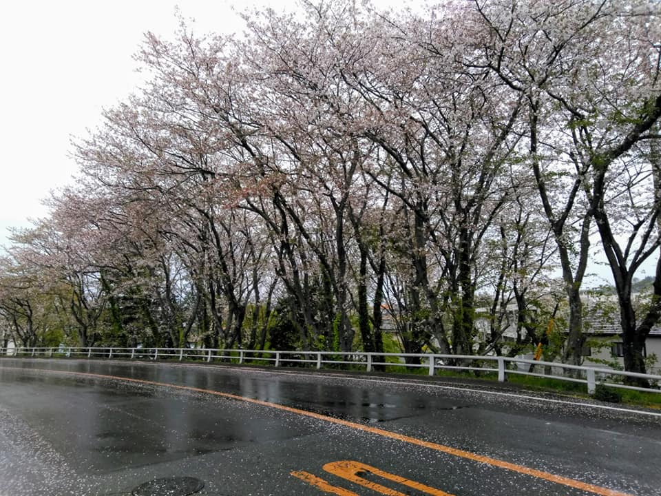 f:id:hihararara:20200415204822j:plain