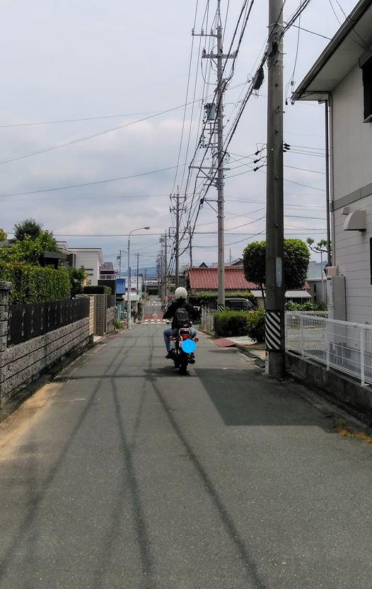 f:id:hihararara:20200726142916j:plain