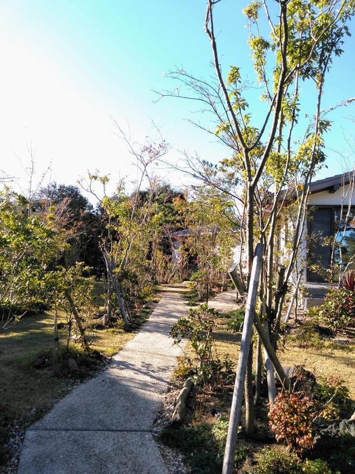 f:id:hihararara:20201125212045j:plain