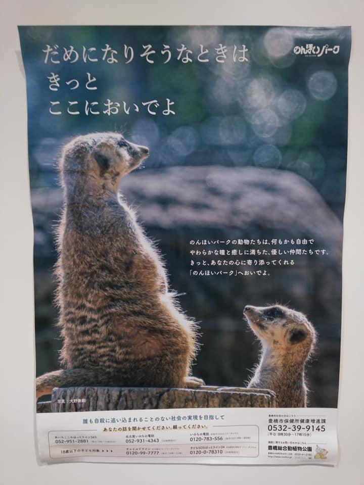 f:id:hihararara:20201209111046j:plain