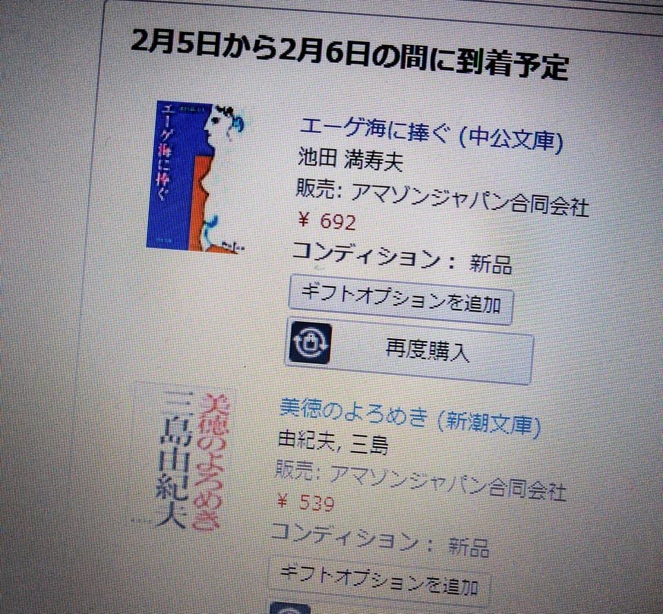 f:id:hihararara:20210204230550j:plain