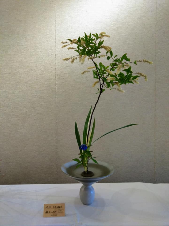 f:id:hihararara:20210526120648j:plain