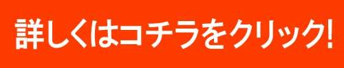 f:id:hihari:20170114193953j:plain