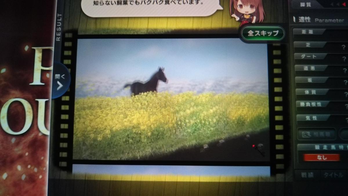 f:id:hihimaru_starhorse:20210208091422j:plain