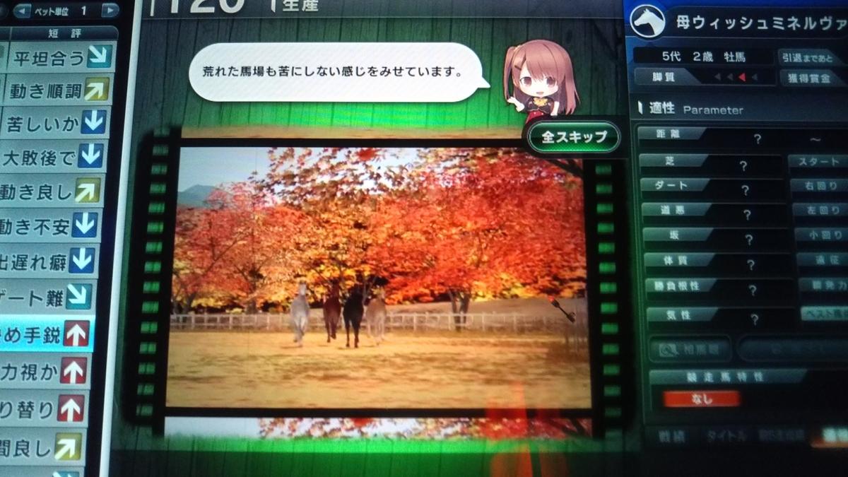 f:id:hihimaru_starhorse:20210208091445j:plain