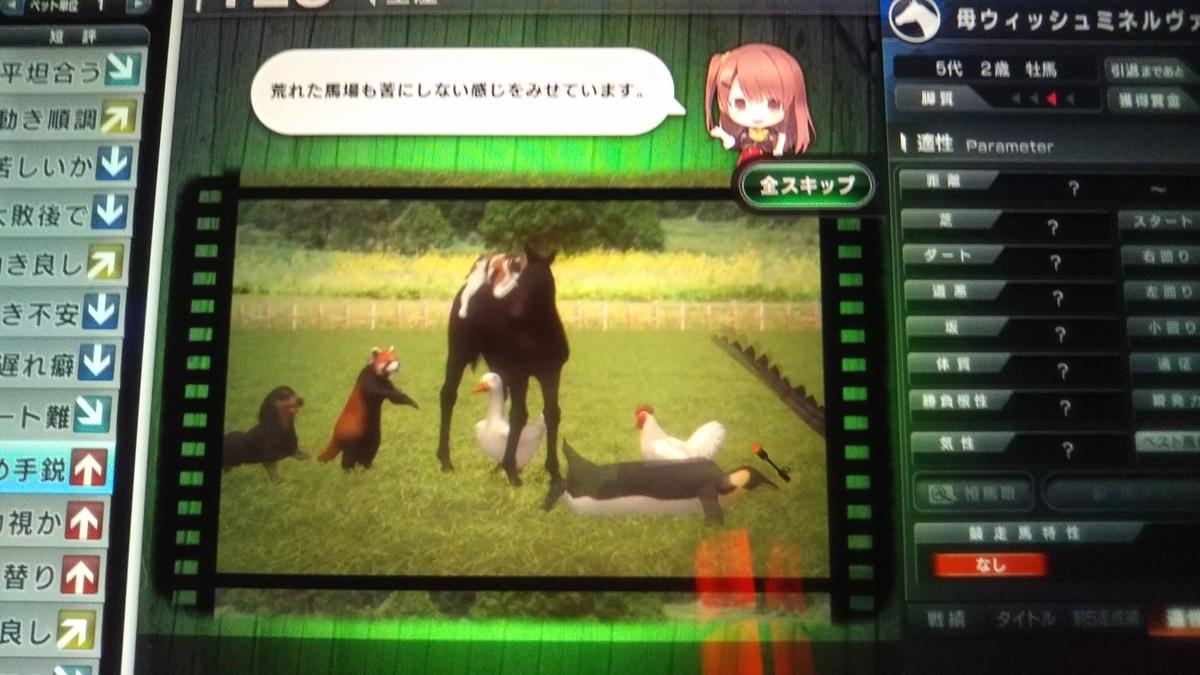 f:id:hihimaru_starhorse:20210208091501j:plain