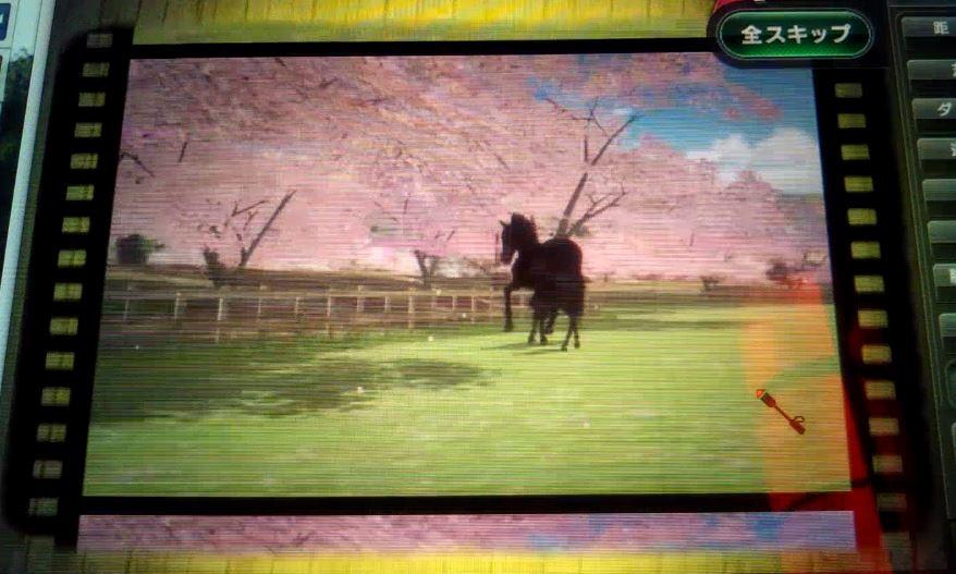 f:id:hihimaru_starhorse:20210214010134j:plain