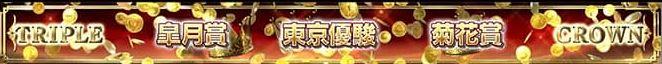 f:id:hihimaru_starhorse:20210214011702j:plain