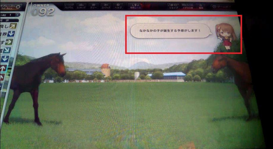 f:id:hihimaru_starhorse:20210217111715j:plain